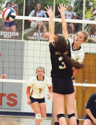 CALDWELL'S ELIZABETH SEE will be a player to watch this season as the Lady Hornets begin playing in District 19-3A. The Tribune announced its predictions for the area volleyball teams, with Caldwell winning District 19-3A. -- Tribune photo by Denise Hornaday